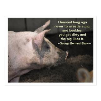 Postal Sabiduría del cerdo - lucha