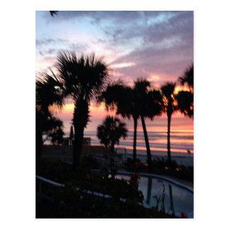 Postal Salida del sol a través de las palmeras