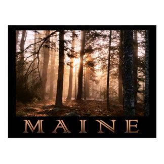 Postal Salida del sol del bosque de Maine