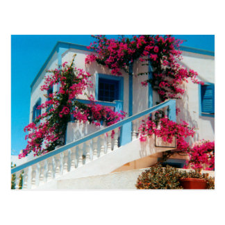 Postal Santorini magnificencia de flor