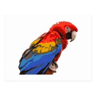 Postal Scarlet_Macaw