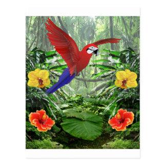 Postal Selva tropical tropical