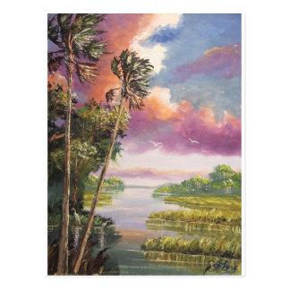 Postal Selva virgen ventosa de las palmeras