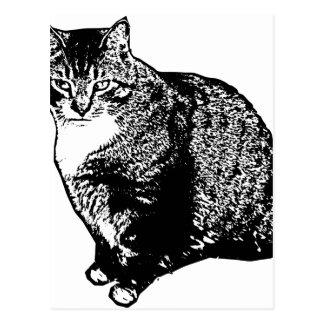 Postal Sentada del gato