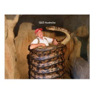 Postal Serpiente grande grande de la serpiente QLD
