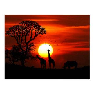 Postal Siluetas africanas del animal de la puesta del sol