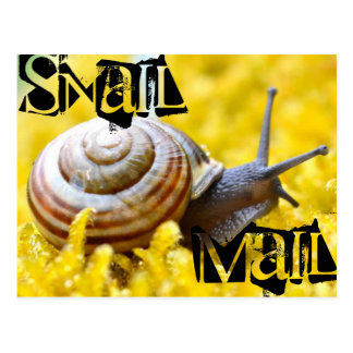 Postal Snail mail