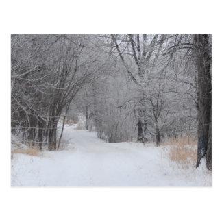 Postal Soledad del invierno