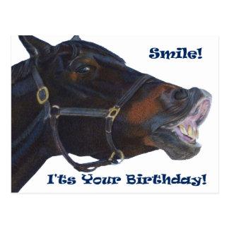 Postal ¡Sonrisa!  ¡Es su cumpleaños! Caballo