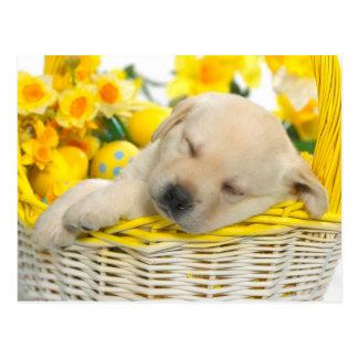 Postal Springtime snooze
