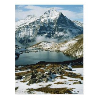 Postal Suiza, Grindelwald, montañas de Bernese, visión