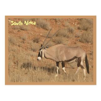 Postal Suráfrica