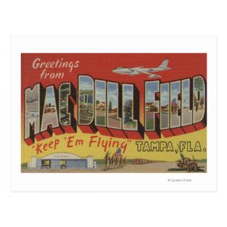Postal Tampa, la Florida - saludos del campo del eneldo