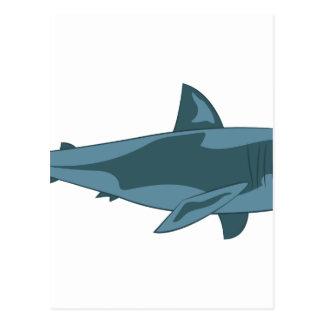 Postal Tiburón