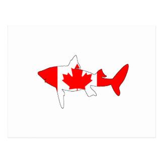 Postal Tiburón Canadá