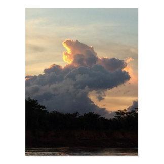 Postal Tiburón de la nube