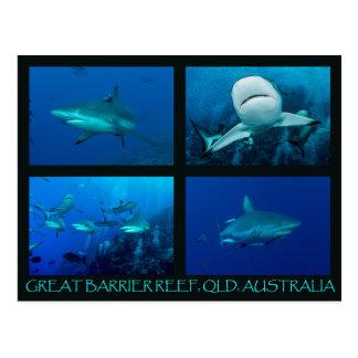 Postal Tiburones del filón del mar de coral