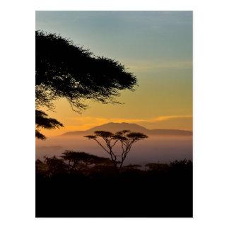 Postal Tierras de los Acacias