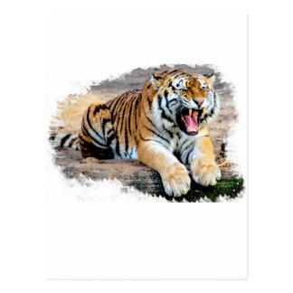 Postal Tigre
