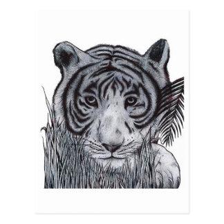 Postal Tigre en la hierba