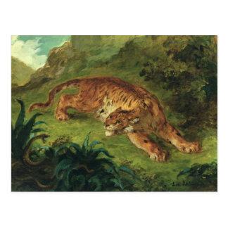 Postal Tigre y serpiente, 1858