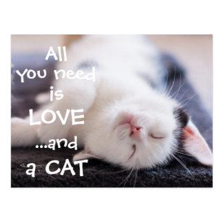 Postal Todo lo que usted necesita es amor… y un gatito de