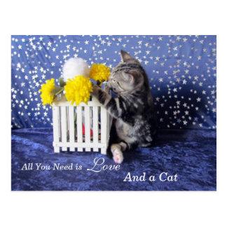 Postal Todo lo que usted necesita es amor - y un gato -