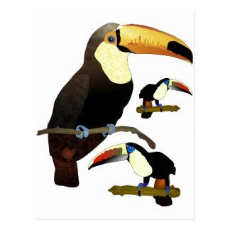 Postal Toucan