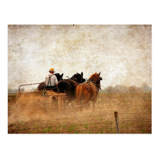Postal Trabajo en el terreno accionado caballo