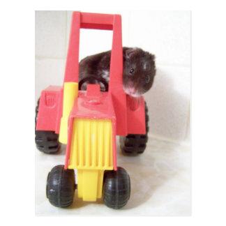 Postal tractor que conduce a Noah