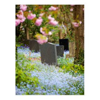 Postal Tranquilidad salvaje, cementerio hermoso. Hopwas