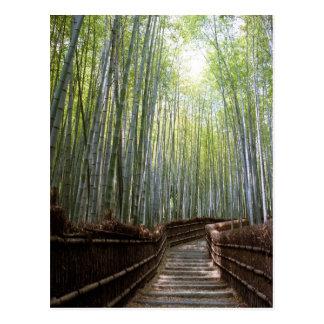 Postal Trayectoria a través del bambú