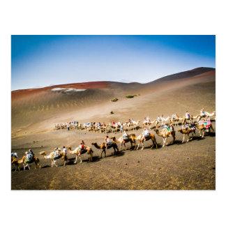 Postal Tren del camello en Lanzarote