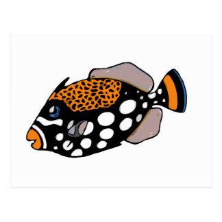 Postal Triggerfish del payaso