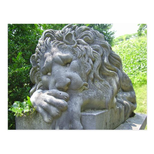Postal triste del león