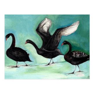 Postal Un ballet de los cisnes negros 2013