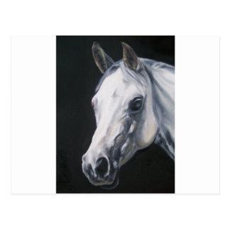Postal Un caballo blanco