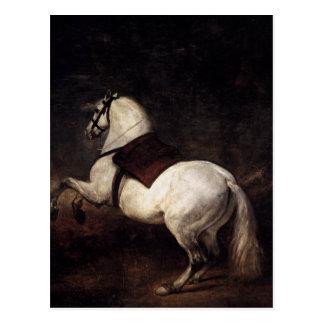Postal Un caballo blanco de Diego Velázquez