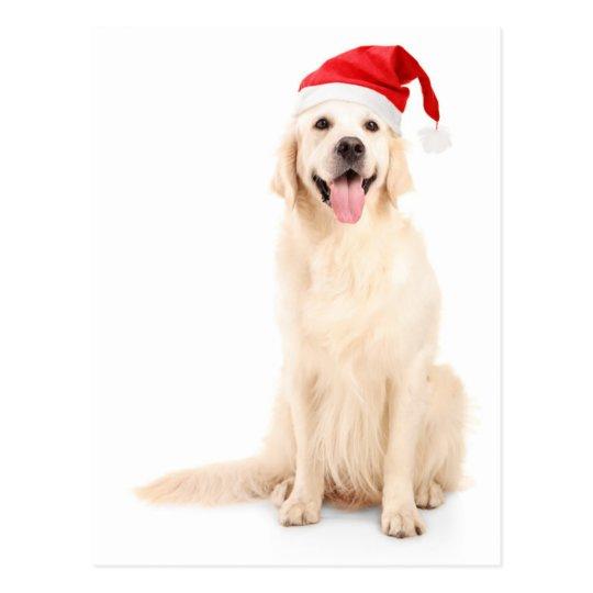Postal Un perro que lleva un gorra del navidad
