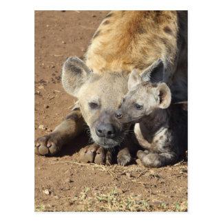 Postal Una hembra manchó el Hyena y su cachorro, Kruger