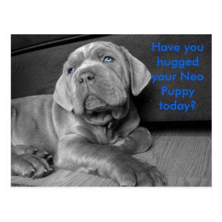Postal ¿Usted ha abrazado su perrito neo hoy?