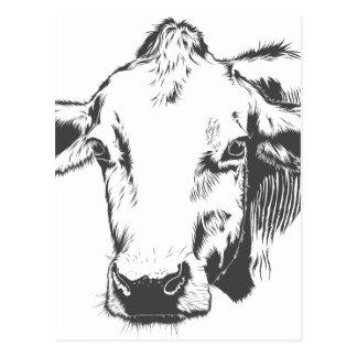 Postal vaca