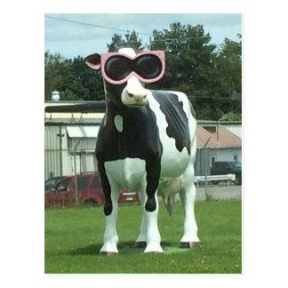 Postal vaca fresca 1