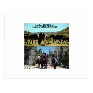 Postal Vaqueros americanos en viaje a los caballos del
