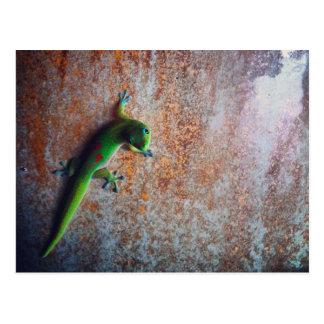 Postal verde del Gecko