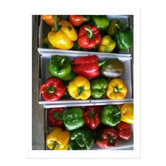 Postal Verduras en el mercado de Amish