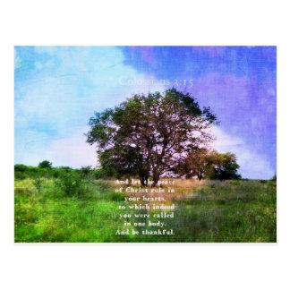 Postal Verso inspirado de la biblia del 3:15 de