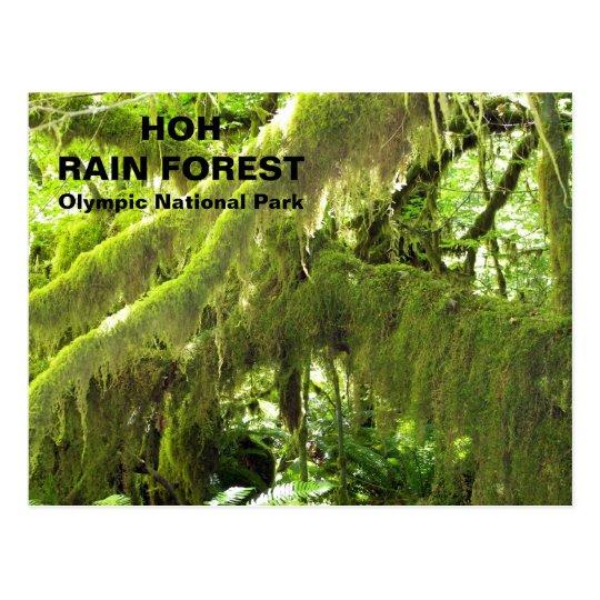 Postal Viaje de la selva tropical de Hoh