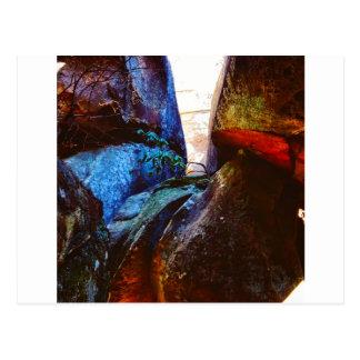 Postal Vida de la roca