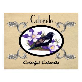 Postal vieja Colorado de la apariencia vintage